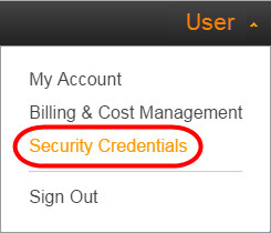 how to get access key id from amazon